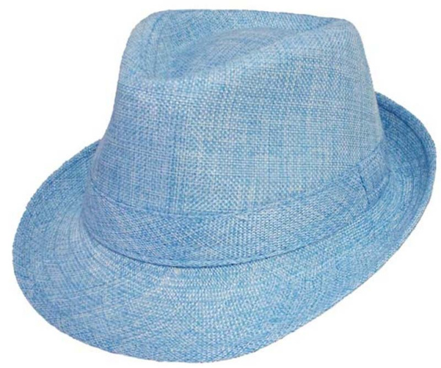 5bd52b8b Boys Blue Fedora Hat