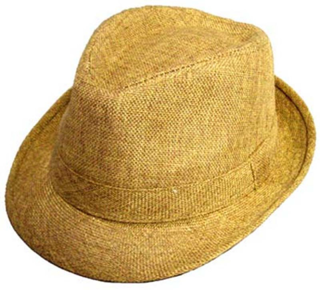 d23e8058 Boys Tan Fedora Hat