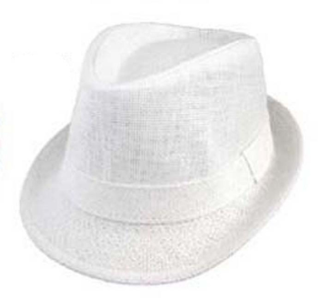 ef59f070 Boys White Fedora. View Images